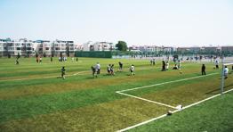 足球运动场