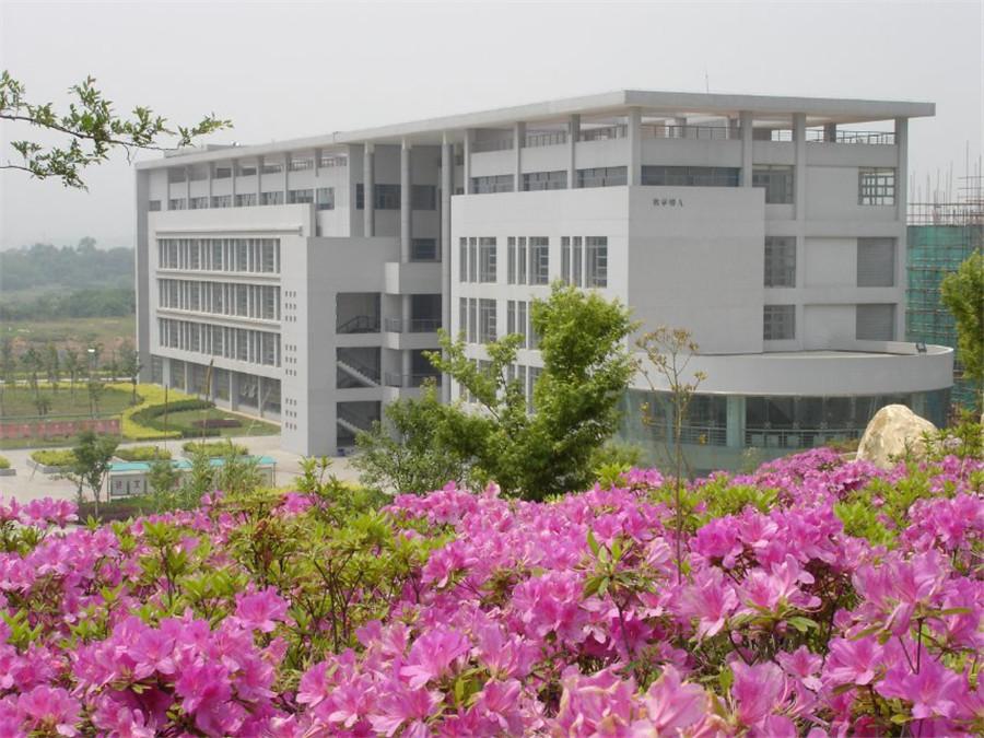 校园美景10