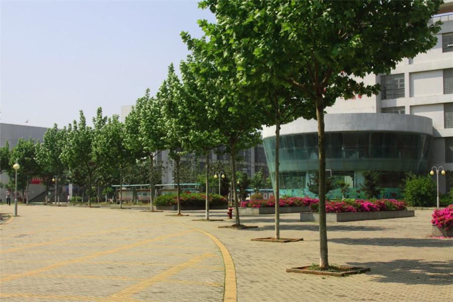 校园美景2