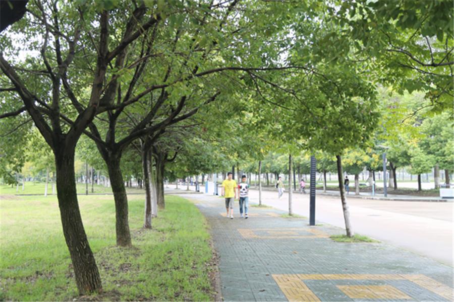 校园风景1