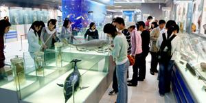 江苏省馆藏最丰富的海洋馆