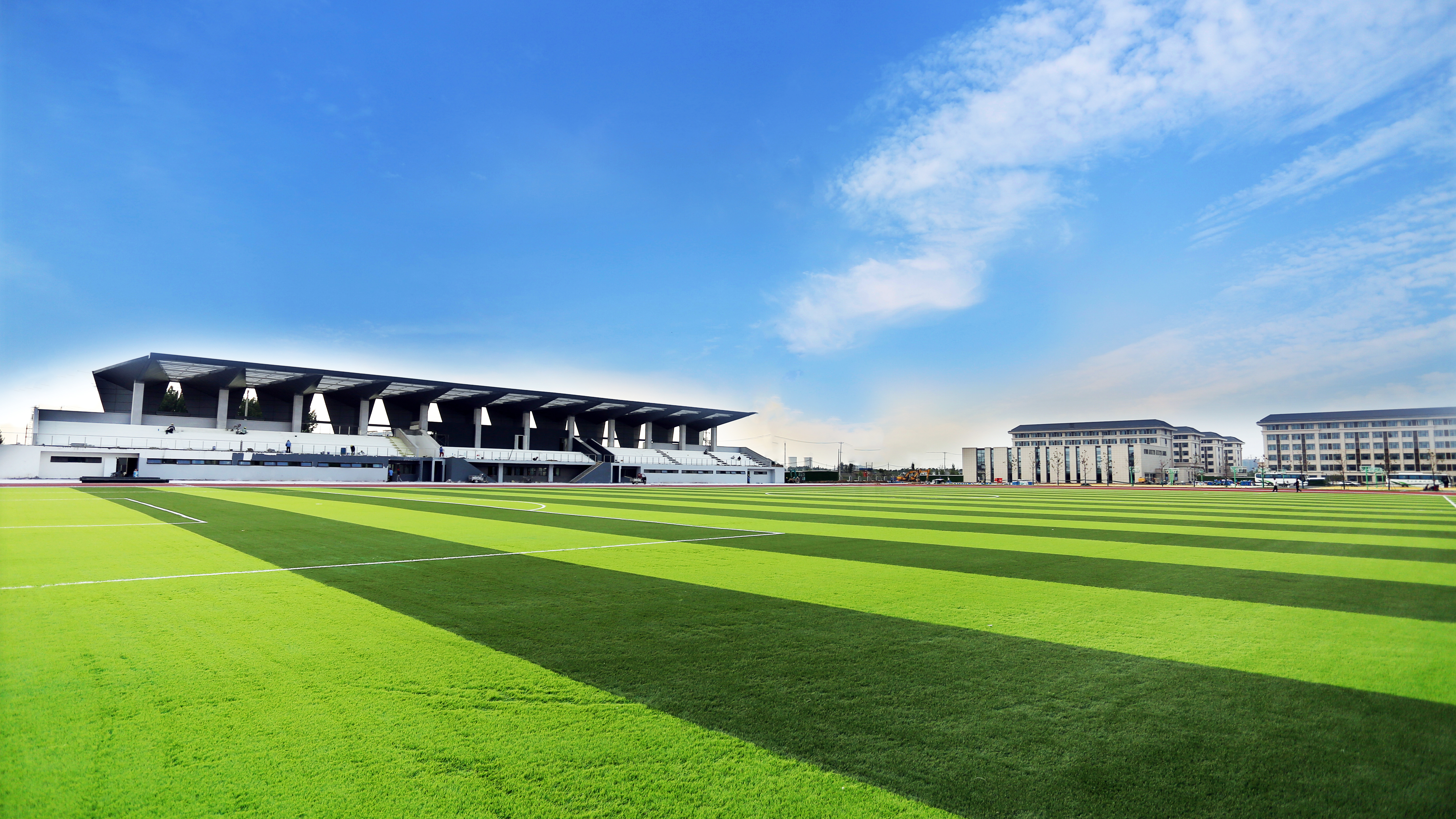 绿荫体育场